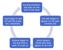 shingles rash characteristics